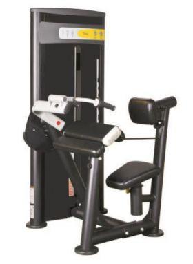 Vertex Triceps Dip styrkeapparat med vektnagasin