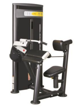 Vertex RWS119 Triceps Dip - Retur