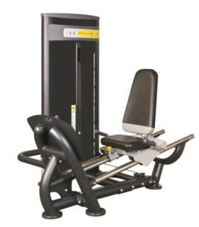 Vertex Seated Leg Press